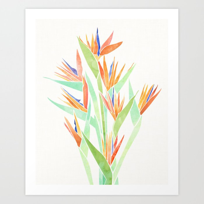 Birds of Paradise ~ tropical bouquet Kunstdrucke