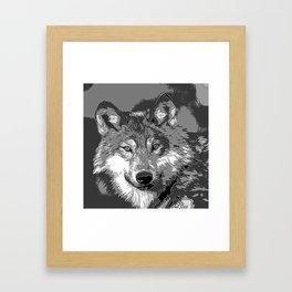 Wolf20151104 Framed Art Print