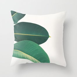 Rubber Fig Leaves II Throw Pillow