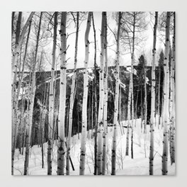 Aspen See Canvas Print