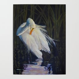 Great Egret at the Pond Poster