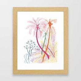 Carpinteria Framed Art Print