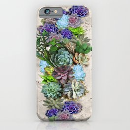South Africa's Succulents iPhone Case