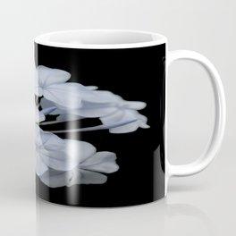 Pale Blue Plumbago Isolated on Black Background Coffee Mug
