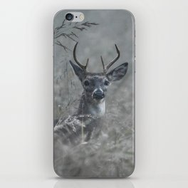 Foggy Morning Buck iPhone Skin