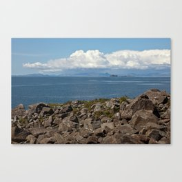 Harris in the Rain Canvas Print
