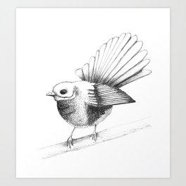 New Zealand Fantail Art Print