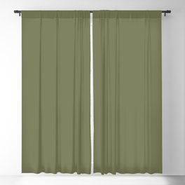 Pine Needle Green Solid Color Pairs With Behr Paint's 2020 Forecast Trending Color Secret Meadow Blackout Curtain