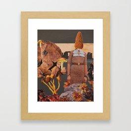 Morchella Conica Framed Art Print