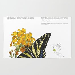 Western Tiger Swallowtail Infographic Rug