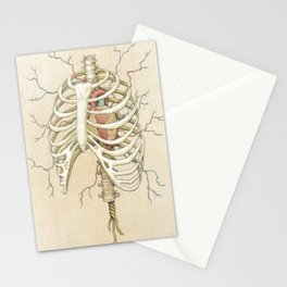 The Core Stationery Cards
