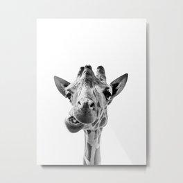 Giraffe Portrait Black and White Metal Print
