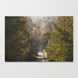 Spruce Ride Canvas Print