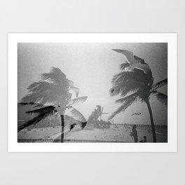 FFFly Art Print