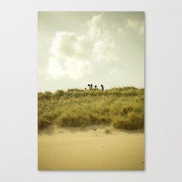 Unknowns 2 Canvas Print