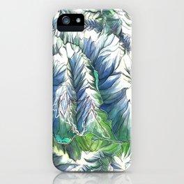 Sea To Sky iPhone Case