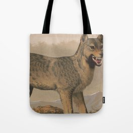 Vintage Illustration of a Gray Wolf (1874) Tote Bag