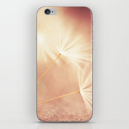 My Wish for You. dandelion seeds photograph iPhone Skin