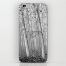 Foggy Poplars. BW iPhone & iPod Skin