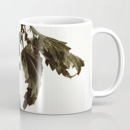 Florales · plant end 6 Coffee Mug
