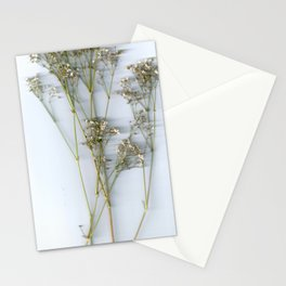 Dry Whites / Flowers Stationery Cards