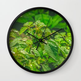 Forest Greenery Wall Clock