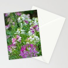Purple and White Stationery Cards