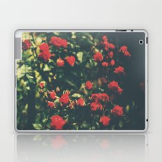 Summer Roses Series  - I -   Laptop & iPad Skin