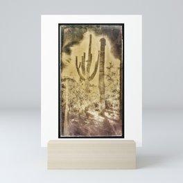 Saguaros #818 Mini Art Print