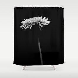 Dandelion - flower Shower Curtain