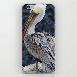 Pelican Portrait, Elkhorn Slough, Moss Landing CA iPhone Skin