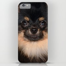 Pomeranian Slim Case iPhone 6s Plus