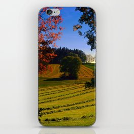 Tree watching in springtime iPhone Skin