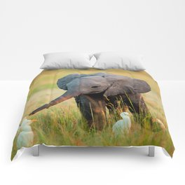 Baby Elephant and Birds Comforters