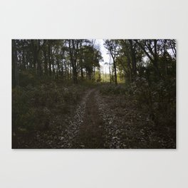 String me along Canvas Print