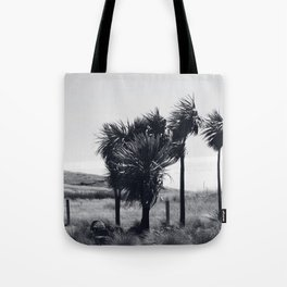 Cabbage Trees - Godley Heads, New Zealand Tote Bag