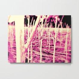 Nr. 312 Metal Print