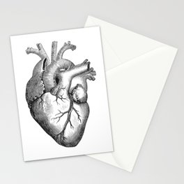 Real Anatomical Human Heart Drawing Stationery Cards