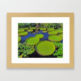 Water Platters Framed Art Print