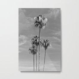 Lovely Palm Trees | monochrome Metal Print