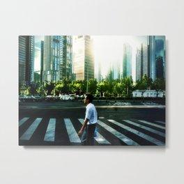 Pudong Zebra Metal Print