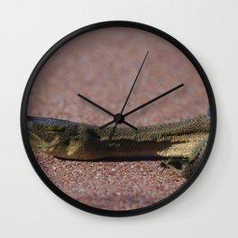 A Long Necked Turtle taken in the wetlands Wall Clock
