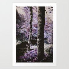 Violet Autumn  Art Print