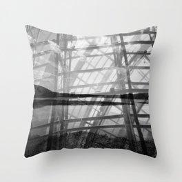 Caged Potomac Throw Pillow