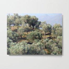 Olive Hill Metal Print