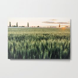 Wheat Field at Sunset Metal Print