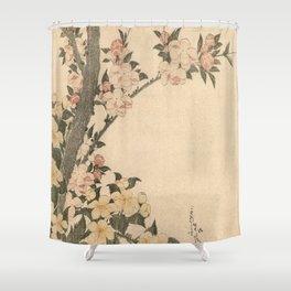 Hokusai, flowers of a cherry-tree- manga, japan,hokusai,japanese,北斎,ミュージシャン Shower Curtain