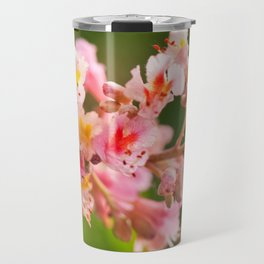 Aesculus red chestnut tree blossoms Travel Mug