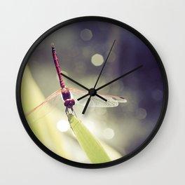 Midsummer Dragonfly Wall Clock