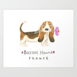 B is for Basset Hound Art Print
